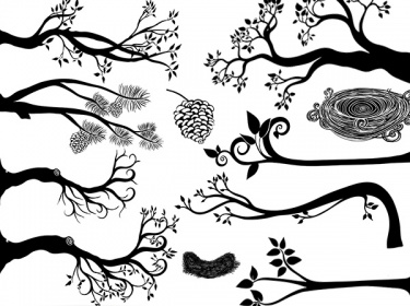 Hen Clip Art Black And White moreover Angel Wings Template Outline also Ice Cream also Tree Branch Silhouette Photoshop Brushes   Clip Art together with Helping Symbol. on cute bird clip art